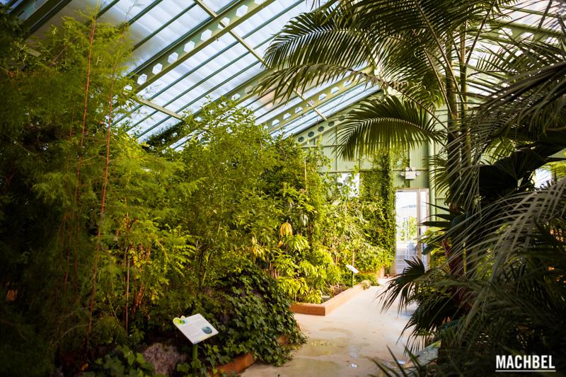 jardin-botanico-de-castilla-la-mancha-jungla-provincia-de-albacete-lugares-para-visitar-castilla-la-mancha-by-machbel